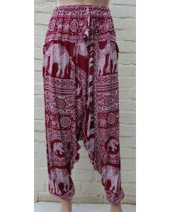 Elephant Print Alibaba Pants